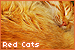 catsred