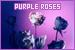 rosespurple